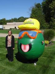 Custom 3d inflatables